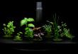 aeroponic herb garden